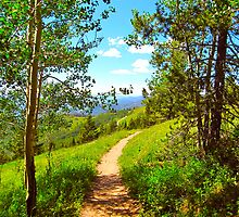 """Hiking Ridge Route Trail"" Vail, Colorado by AlexandraZloto"