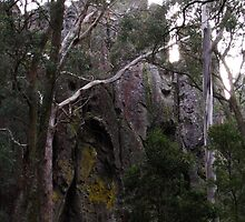 Hanging Rock by Anne-Marie Reeves