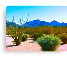 """Desertscape"" Scottsdale, Arizona Canvas Print"