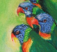 Lorikeets by Jaana Day
