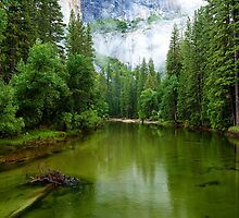 Merced River, Yosemite Yalley by Ross Campbell