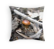 Tiny Brown One Throw Pillow