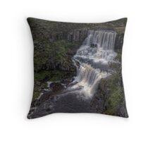 Upper Ebor Falls • NSW • Australia Throw Pillow