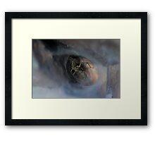 Spider in Web Cave Framed Print