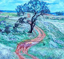 Long And Winding Road - Cootamundra NSW Australia - The HDR Experience by Philip Johnson