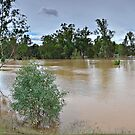 Wagga Wagga Beach carpark Flood Pano by bazcelt