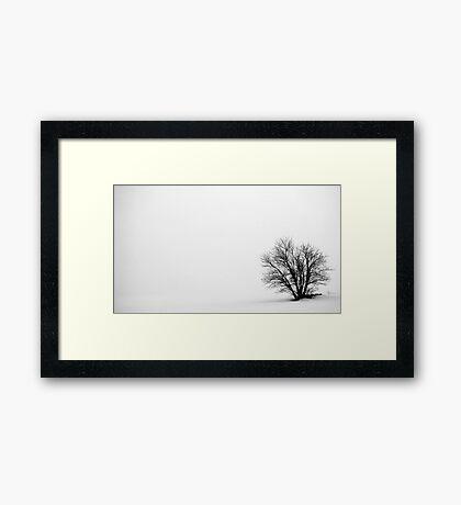 10.3.2012: In the Mist Framed Print
