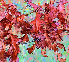Oak Leaves ~ Abstract ~ by Charles & Patricia   Harkins ~ Picture Oregon