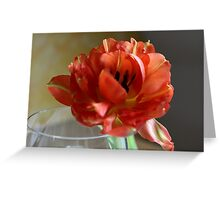 Closeup of Tulip with Glass Greeting Card
