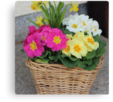 Flower Basket in Spring Canvas Print