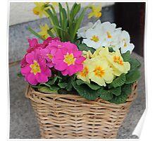 Flower Basket in Spring Poster