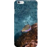 The Great Barrier Reef iPhone Case/Skin