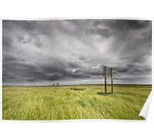 Marshlands of Denmark Poster