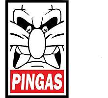 PINGAS Photographic Print