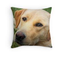 Fabulously Freddie Throw Pillow