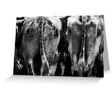 Farm Animal_ cow's behind. Greeting Card