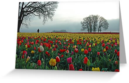 In A Sea Of Color by Nick Boren