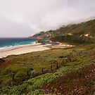 California coast  by s2kologist