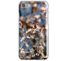 Cherry blossoms iPhone case iPhone Case/Skin