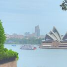 Soft Sydney Harbour by Michael Matthews