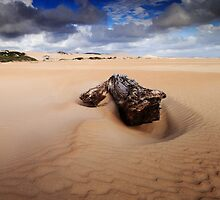 Sandy Cape by David Murphy