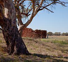 The Big Tree by sedge808