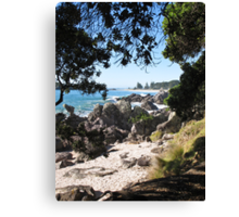 looking at Mount beach Canvas Print