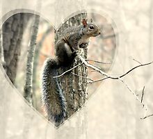 My Little Squirrelly Heart by Jean Gregory  Evans