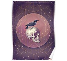 Crow and Skull Collage Poster
