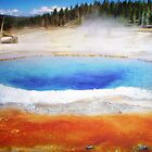 Yellowstone by Tracie Louise