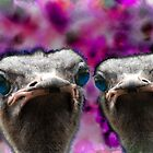 We are the Ostrich by TheBrit