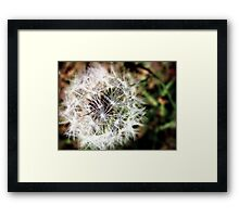Nature's wish Framed Print