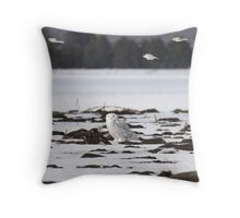 Snow buntings sailing past Snowy Momma Throw Pillow