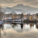 Between Fall and Winter by nikongreg