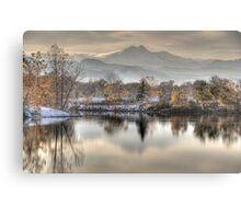Between Fall and Winter Canvas Print