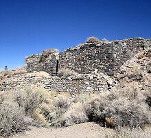 Ruins In Nevada  by marilyn diaz