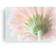 Pastel sweet Canvas Print