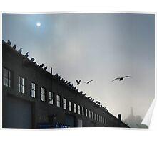 Seagull Pier Poster