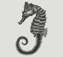Seahorse by Jeno Futo