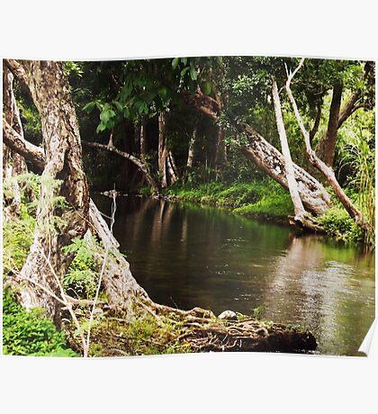 Little Mulgrave River Poster