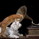 My Master's Voice by Anne Young