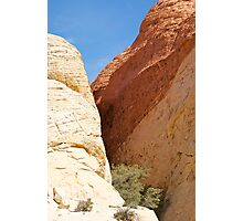 Red Rock Canyon, Las Vegas, Nevada Photographic Print