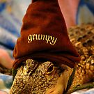 Grumpy Penny.... by Angela Lance