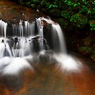 A water fall in my village by Dinni H