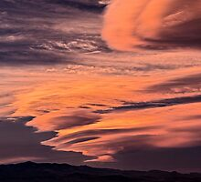 Riding the Wild Sky by Gregory J Summers