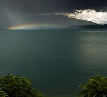 Fallen Rainbow by Michael Treloar
