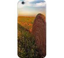 Hay in the Field iPhone Case/Skin