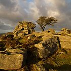 Holwell Tor on Dartmoor by peteton
