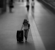 The Traveller by Ivan Kemp