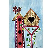 Bird House ~ Sweet Spring Memories. Photographic Print